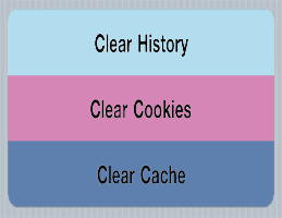 clear browser history cookies